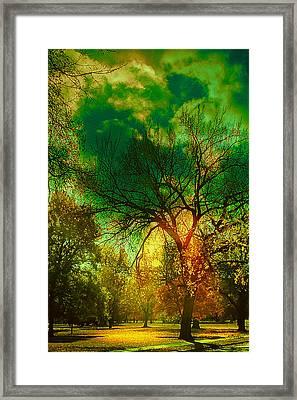Sun Daggers Framed Print by Kat Besthorn