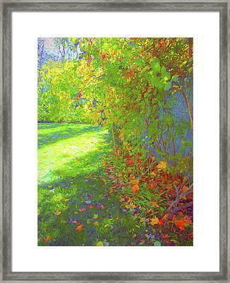 Sun Dappled - Early Autumn Framed Print