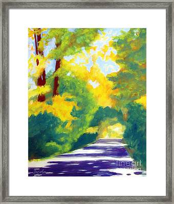 Sun Dappled Road Framed Print