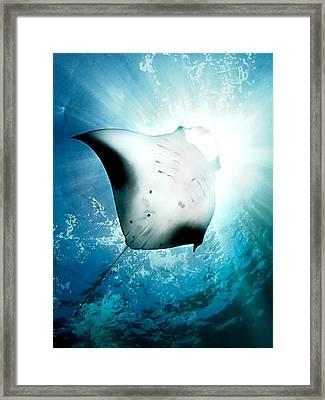 Sun Diver Framed Print by Henry Jager