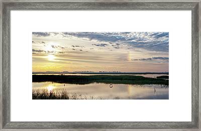 Sun Dog And Herons Framed Print