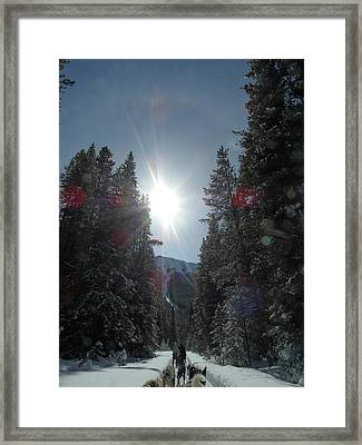 Sun Dogs Framed Print by Mark Lehar