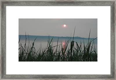 Sun Drop Framed Print