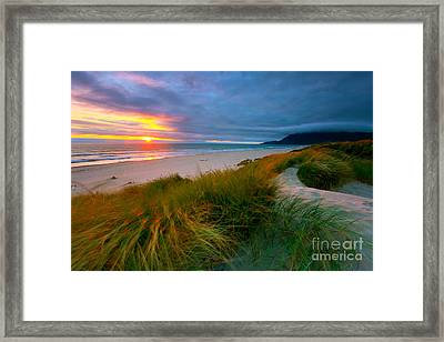 Sun Dunes Framed Print
