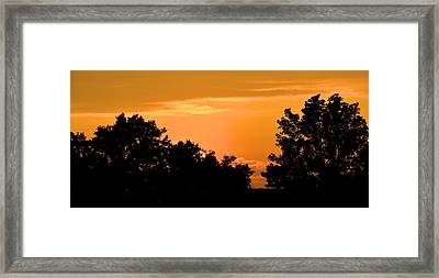Sun Hiding Behind Trees Framed Print by Richard Jenkins