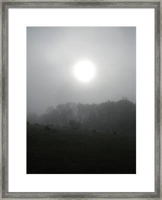 Sun In Fog Over Cemetery Framed Print by Richard Singleton