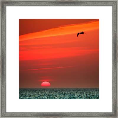 Sun Is Up Framed Print by Dapixara Art