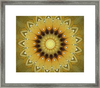 Sun Kaleidoscope Framed Print