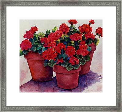 Framed Print featuring the painting Sun-kissed Geraniums by Ann Peck
