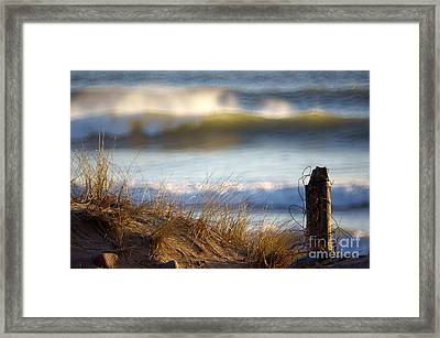 Sun Kissed Waves Framed Print