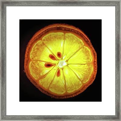 Sun Lemon Framed Print