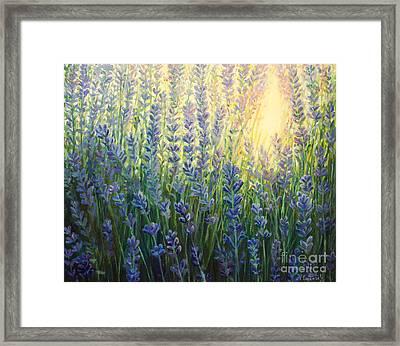 Sun Nuance Framed Print