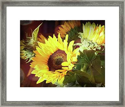 Framed Print featuring the photograph Sun Of The Flower by Michael Hope