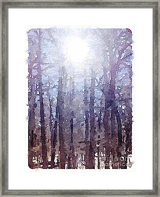 Sun On Cold Trees Framed Print by Janet Dodrill