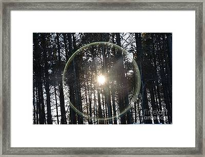 Sun Or Lens Flare In Between The Woods -georgia Framed Print