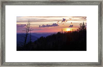 Sun Over Cedar Framed Print by Chad Dutson