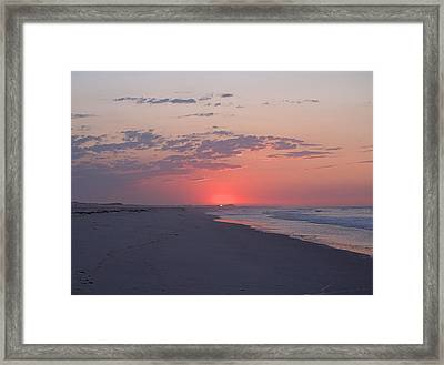 Framed Print featuring the photograph Sun Pop by  Newwwman