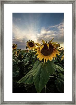 Framed Print featuring the photograph Sun Rays  by Aaron J Groen