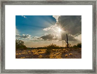 Framed Print featuring the photograph Sun Rays In Tucson by Dan McManus