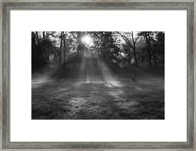 Sun Rays Though Fog Framed Print by Sven Brogren