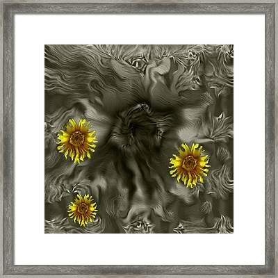 Sun Roses In The Deep Dark Forest Framed Print