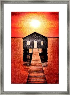Sun Scars Framed Print by Az Jackson
