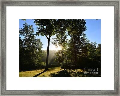 Sun Shadow Framed Print