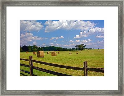 Framed Print featuring the photograph Sun Shone Hay Made by Byron Varvarigos