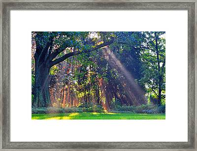 Sun Shower B Framed Print by Peter  McIntosh