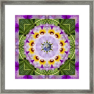 Sun Shower Framed Print