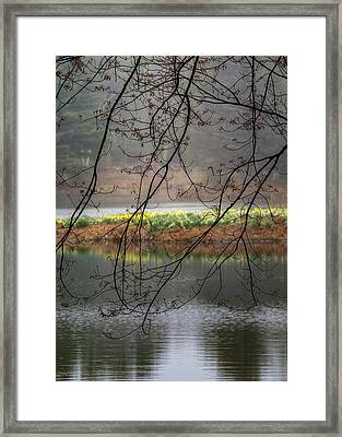 Framed Print featuring the photograph Sun Shower by Bill Wakeley