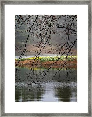 Sun Shower Framed Print by Bill Wakeley