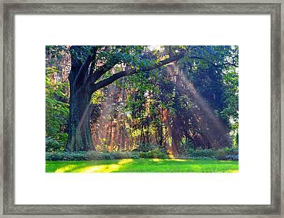 Sun Shower C Framed Print by Peter  McIntosh