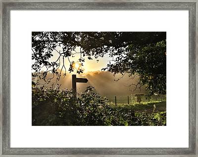 Sun Sign Framed Print
