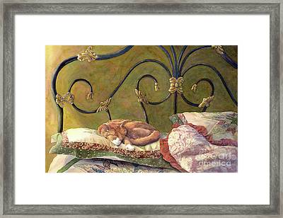 Sunbeam Dreamin Framed Print by Malanda Warner