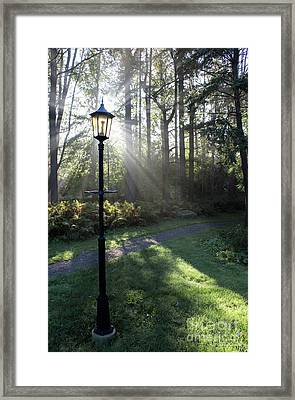 Sunbeam Illumination Framed Print