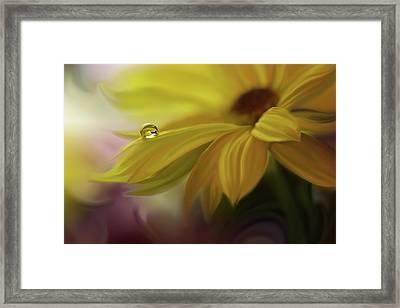 Sunbeam... Framed Print by Juliana Nan
