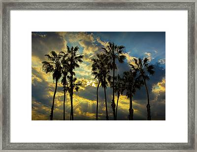 Framed Print featuring the photograph Sunbeams And Palm Trees By Cabrillo Beach by Randall Nyhof