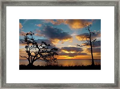Sunbeams At Sunrise Framed Print by Bill Chambers