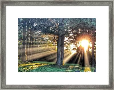 Sunbeams V Framed Print