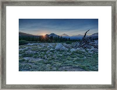 Sunburst In Tuolumne Framed Print