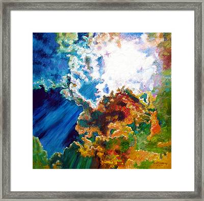 Sunburst Framed Print by John Lautermilch