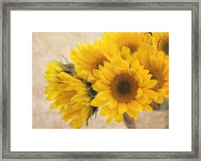 Sunburst Framed Print by Kim Hojnacki