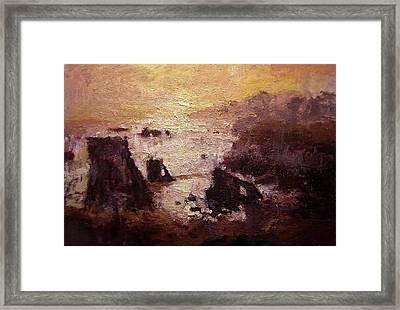 Sunburst On Shell Beach Framed Print by R W Goetting