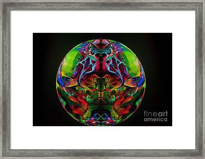 Suncatcher Framed Print by Dan Cope