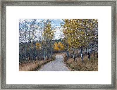 Framed Print featuring the photograph Sunday Drive by Chuck Jason