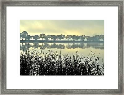 Fog At Sunrise Framed Print