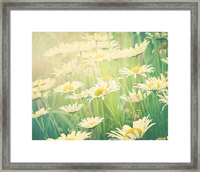 Sunday Morning Framed Print by Amy Tyler