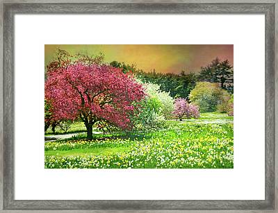 Framed Print featuring the photograph Sunday My Day by Diana Angstadt