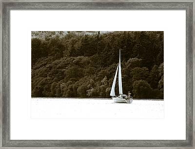 Sunday Sailor Framed Print by Andy Smy